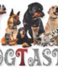 Dogtastic