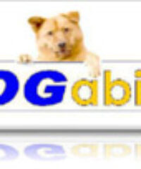DOG ability
